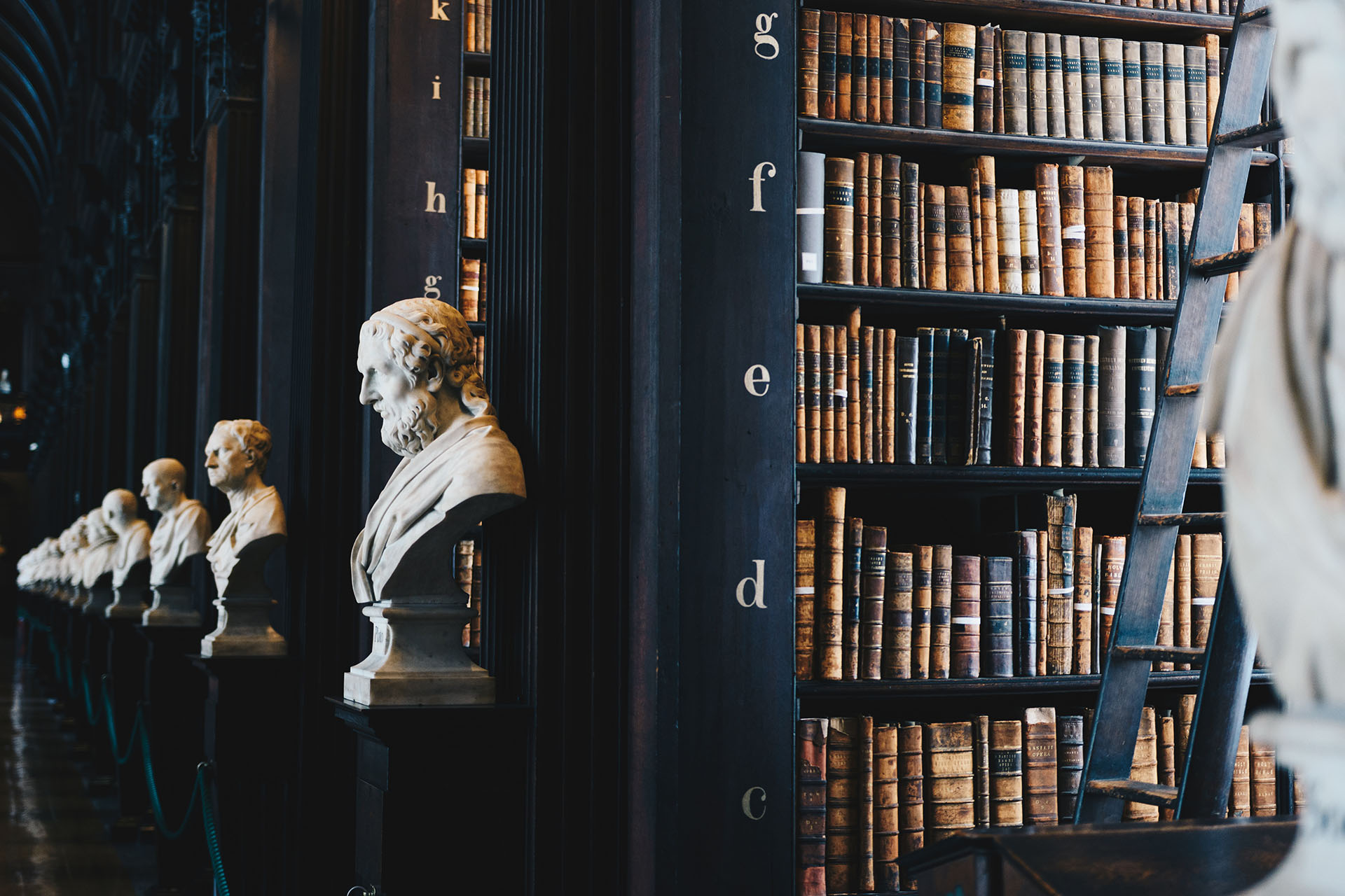 bookshelves in library with statues